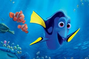 google tag manager es Dory